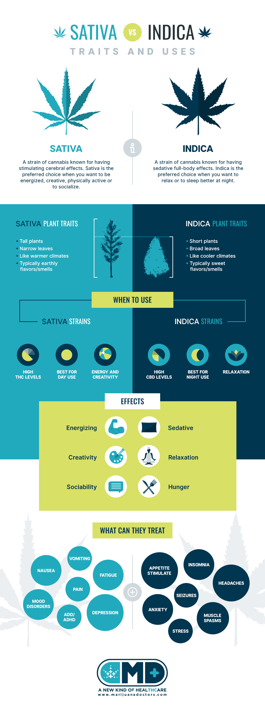 indica vs sativa overview