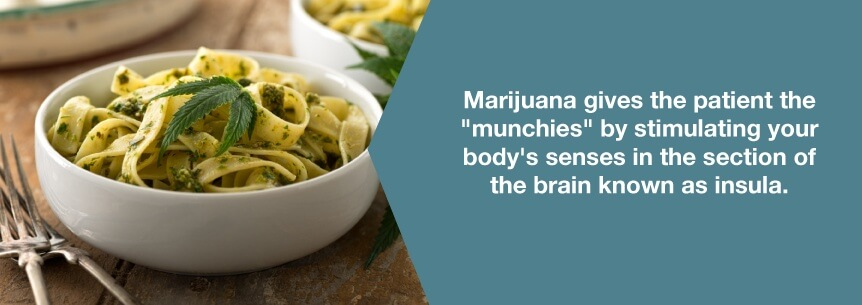 marijuana stimulates appetite