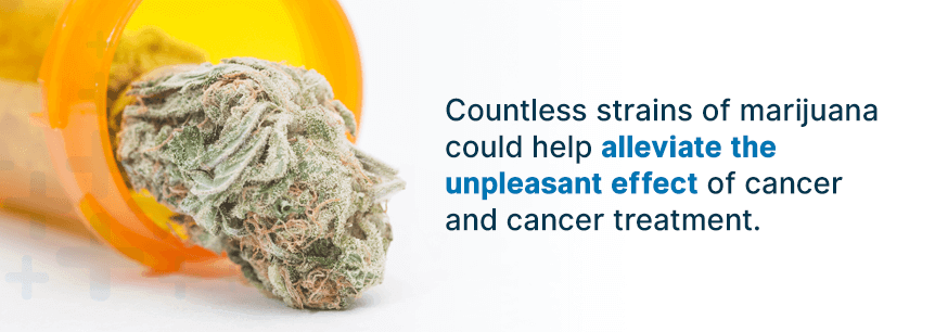 best cancer strains