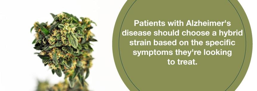 hybrid strains