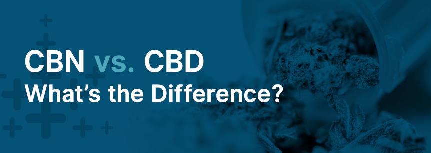 CBN vs. CBD — What's the Difference?