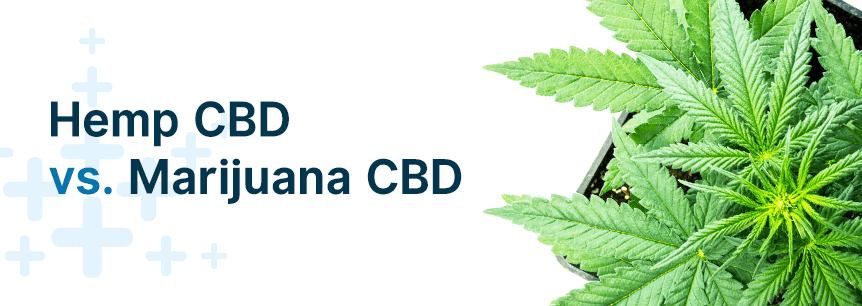 hemp cbd vs marijuana cbd