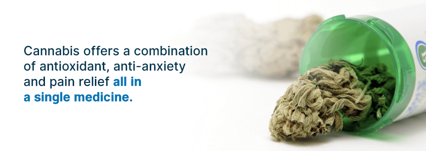 marijuana treats movement disorders