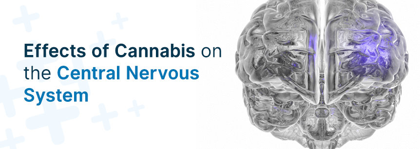 cannabis central nervous system