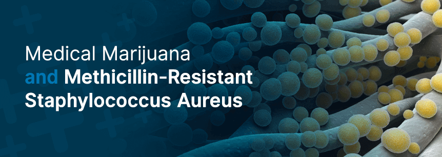 marijuana for mrsa