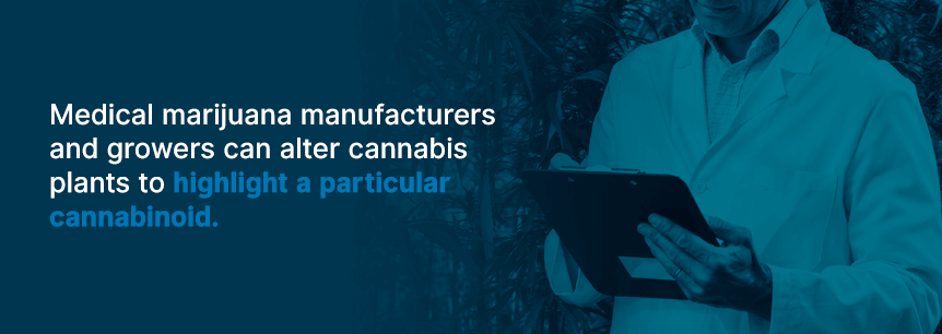 medical marijuana manufacturers