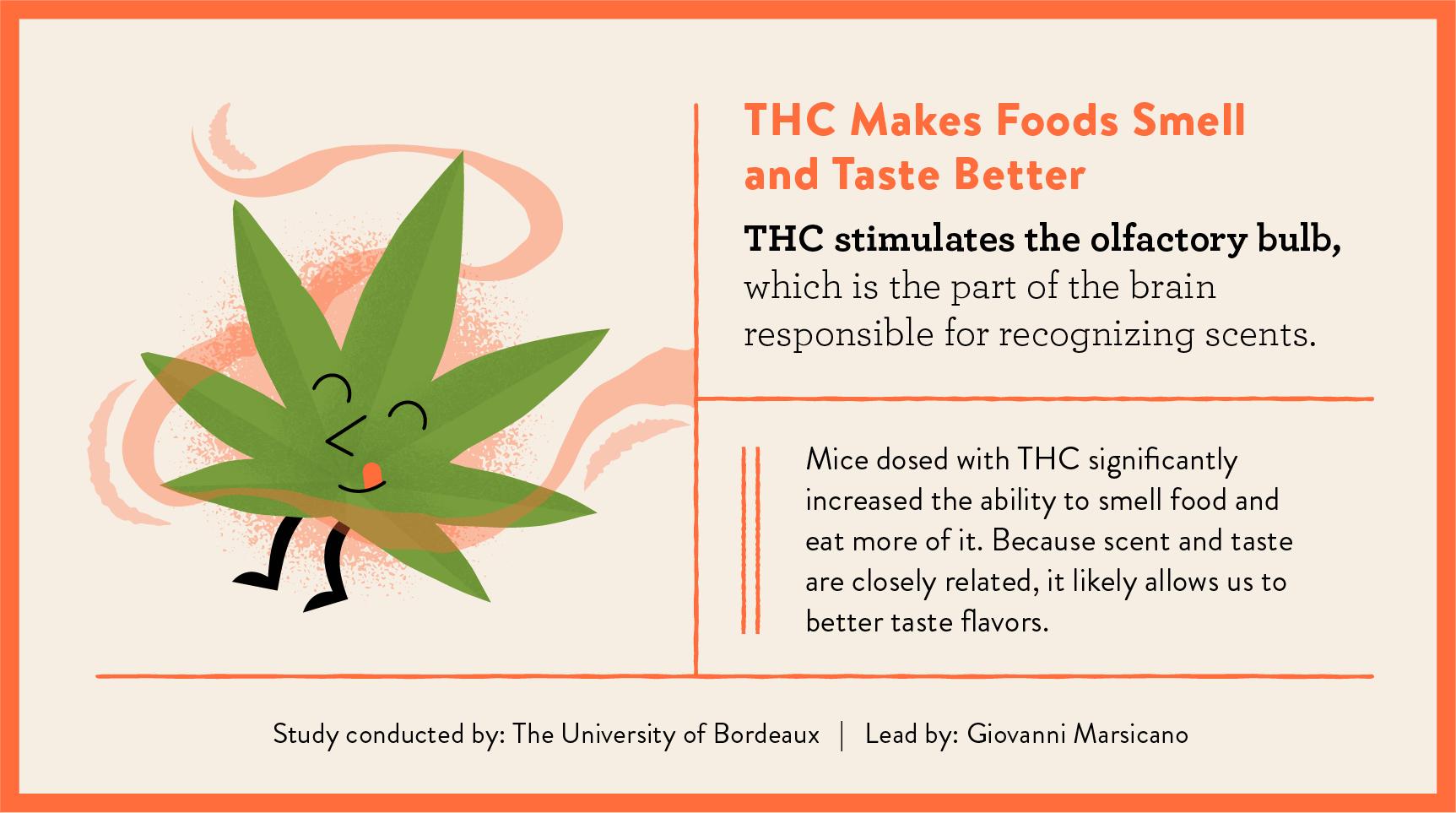 THC makes food taste better study