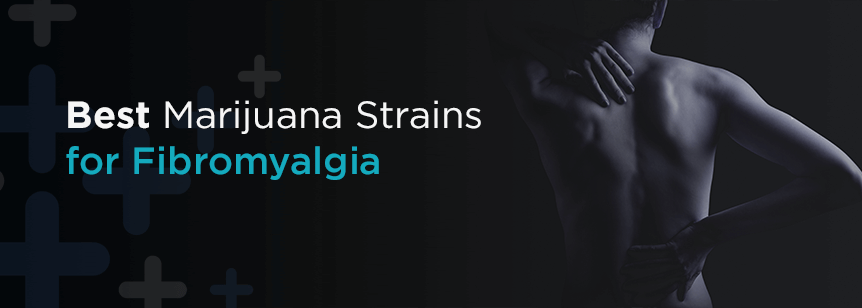 Best Medical Marijuana Strains for Fibromyalgia