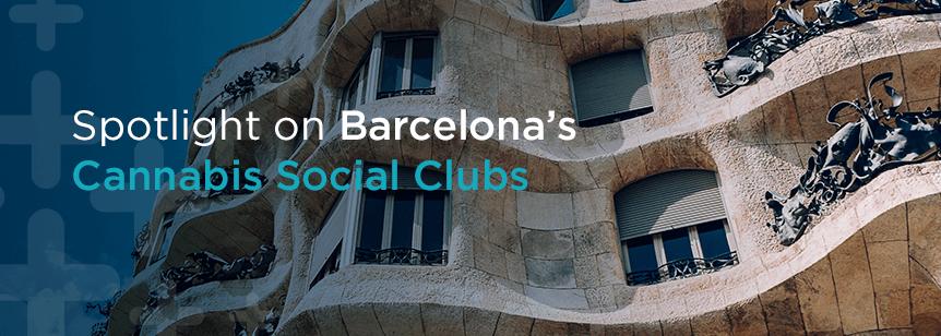Spotlight on Barcelona's Cannabis Social Clubs