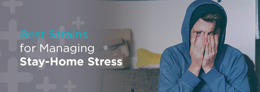 Stay Home Stress Strains