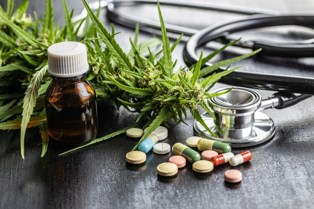 Thailan cancer research, cannabis for cancer, marijuana doctors