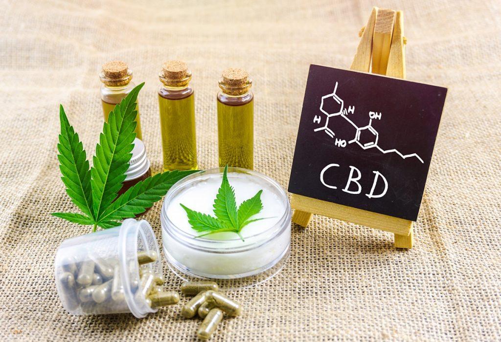 pets and CBD, cbd oil, marijuana doctors