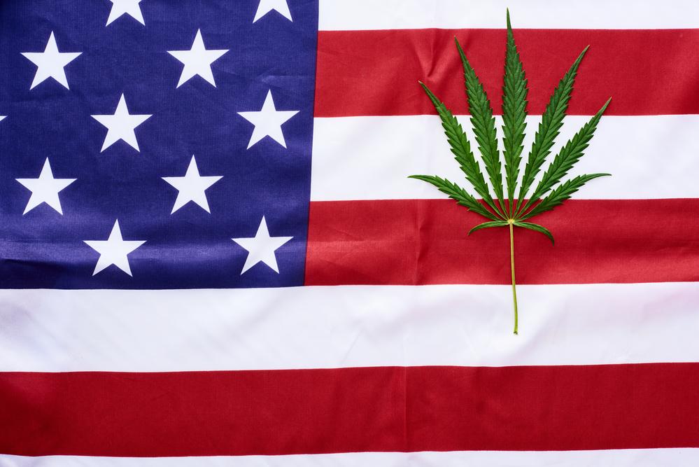 American Federal Cannabis Legalization