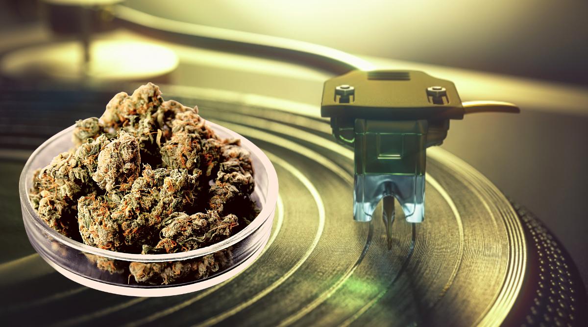 Jay-Z MONOGRAM Cannabis California