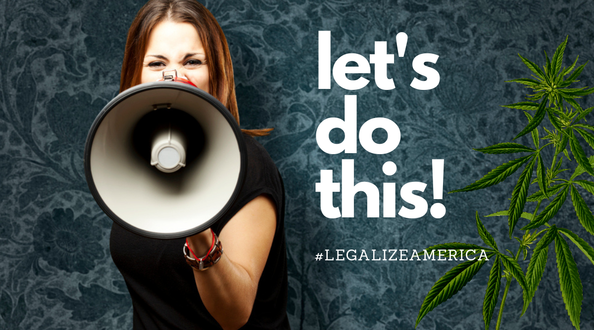 Legalize Cannabis MORE Act