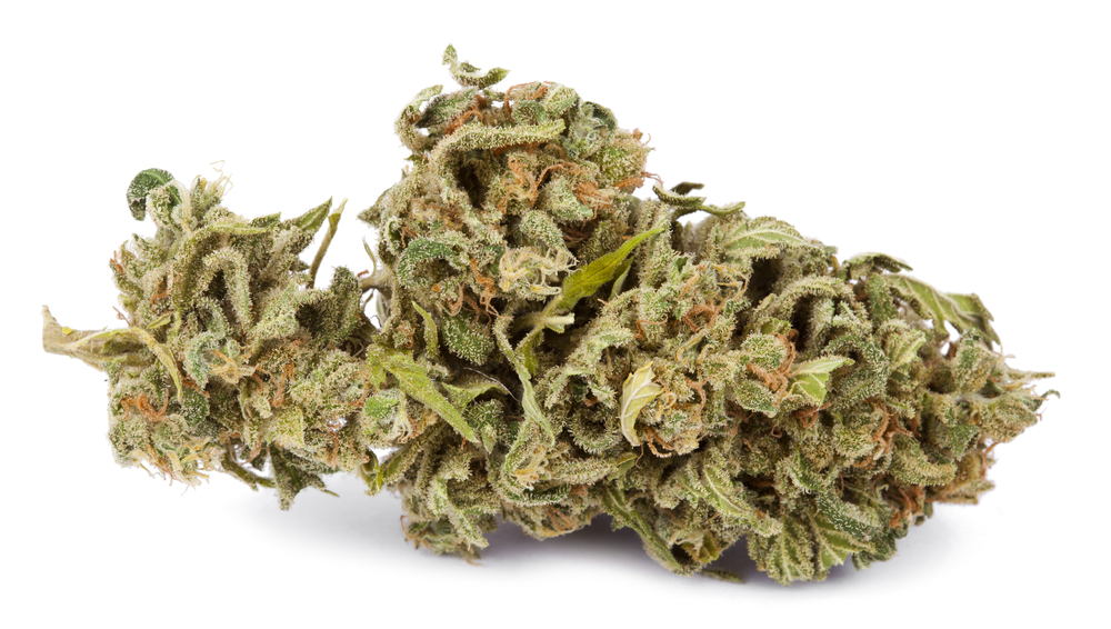 Montana Recreational Weed Laws