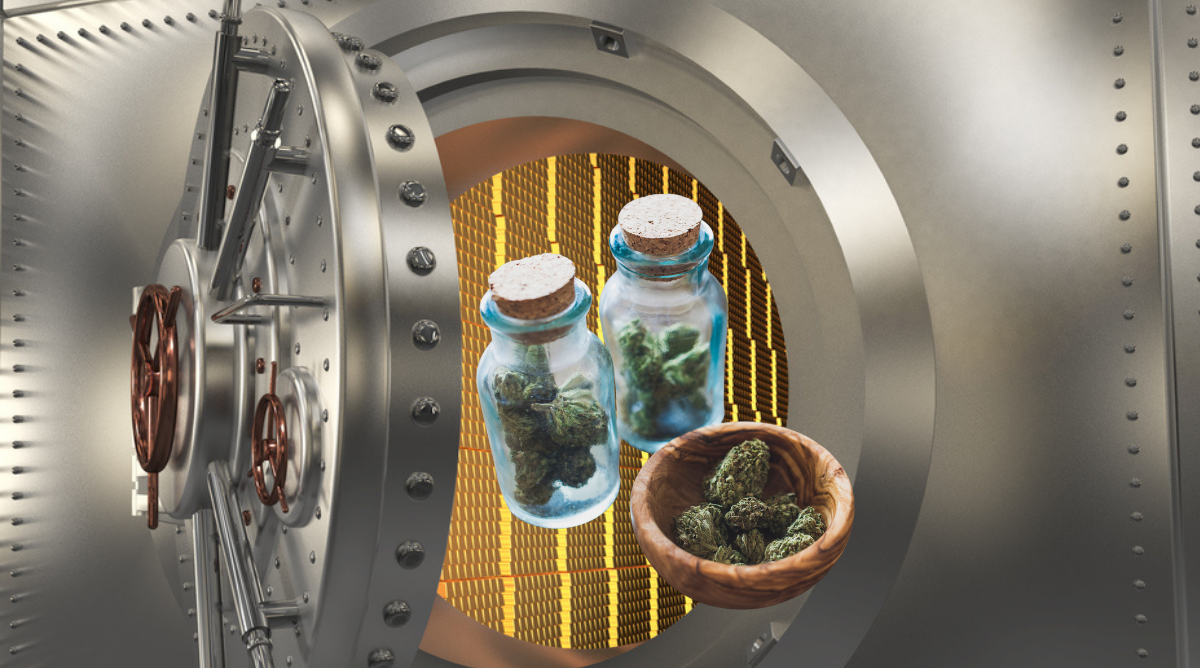 Stash Box Medical Cannabis Storage