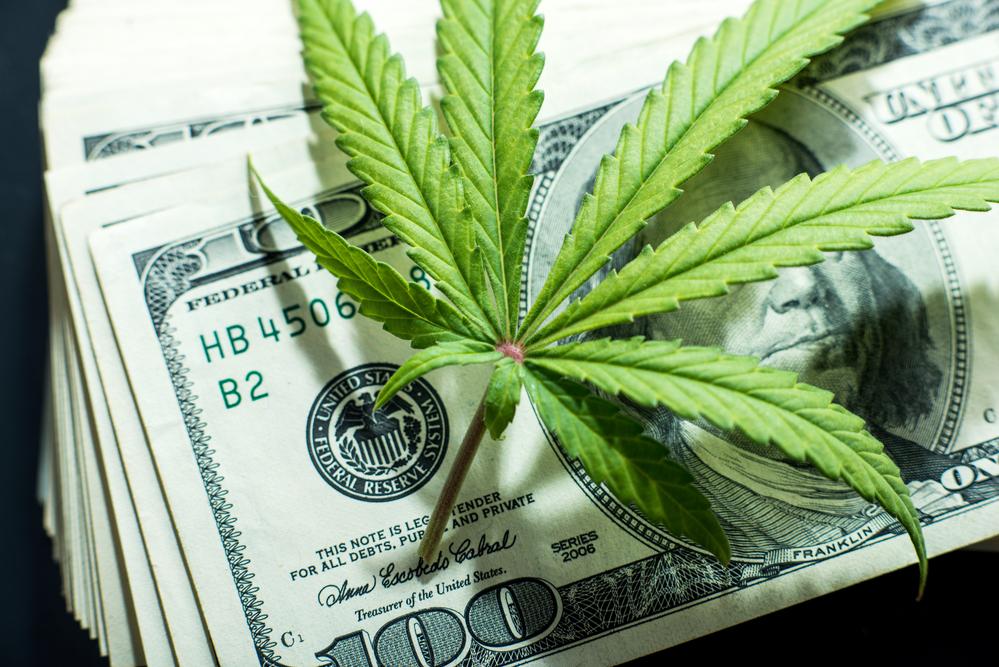 Curaleaf Cannabis Stocks