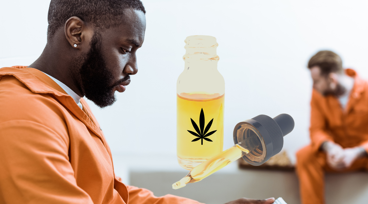 Free Cannabis to Curb Prison Overdose Deaths?