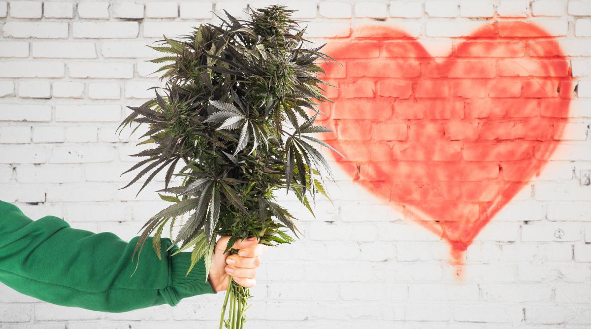 Self care sunday marijuana doctors valentine's day