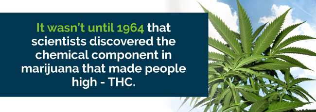 thc discovered in 1964