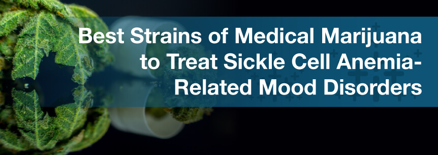 Best Strains of Medical Marijuana to Treat Sickle Cell Anemia-Related Mood Disorders
